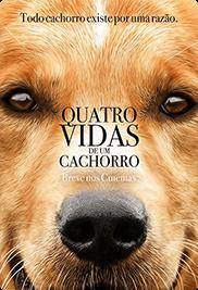 quatro-vidas-de-um-cachorro-poster-desktop.png